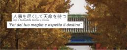 Osservatorio novembre banner
